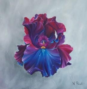 fraicheur d'iris