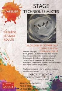 Stage_2017_Mots bleus blog